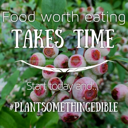Food worth eating takes time #PlantSomethingEdible