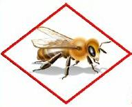 Bee Hazard Icon